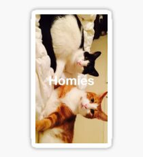 Homies Sticker