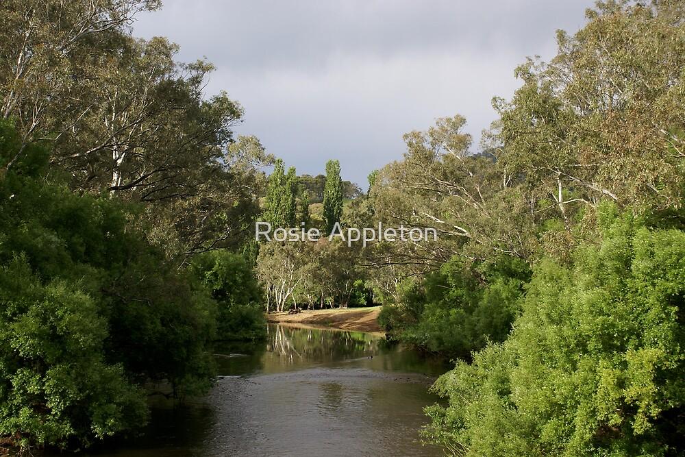 Mitta Mitta River - Mitta Mitta, Victoria by Rosie Appleton