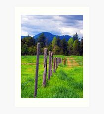 Following the Fence Art Print