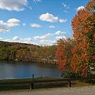 Autumn Colors II by MDossat