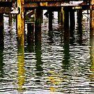 Wharf Reflections by Barbara  Brown