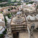 Seville Spain From the Giralda Bell Tower by Deirdreb