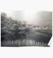 Genevieve's Lake Poster