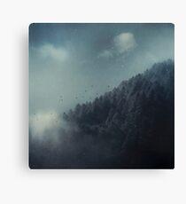 ashen forest Canvas Print