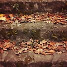Herbstblätter auf einer alten Treppe von germanX
