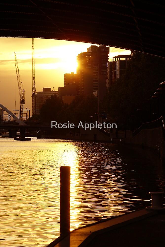 Under the bridge sunset by Rosie Appleton