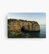 Sea Cave and Agave Bloom Spike - the Magic of Algarve Portugal Canvas Print