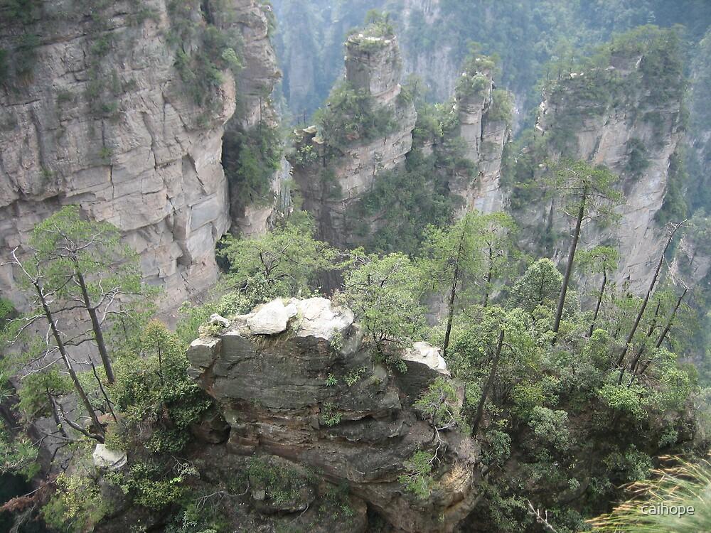 Zhang Jia Jie Mountain by caihope