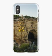 Sea Cave and Agave Bloom Spike - the Magic of Algarve Portugal iPhone Case