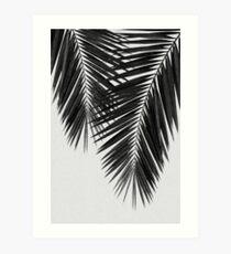 Palm Leaf II Black & White Art Print