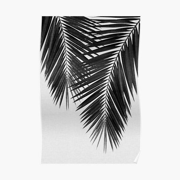 Palm Leaf II Black & White Poster