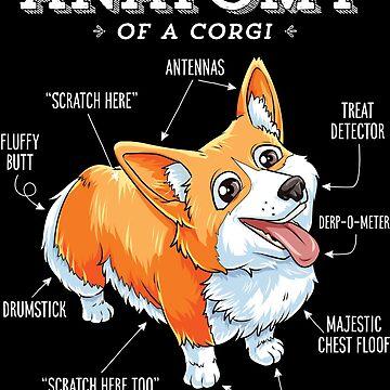 Anatomy of a Corgi T-Shirt Funny Corgis Dog Puppy Shirt by LiqueGifts