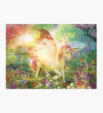 Unicorn Butterfly Photographic Print