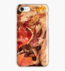 Maple's Last Stand iPhone Case/Skin
