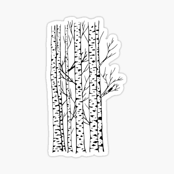 Birch Trees pattern Sticker