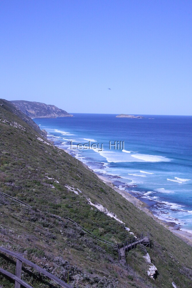 WA Waves!  by Lesley  Hill
