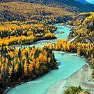 Fall on Matanuska River by Bob Hortman
