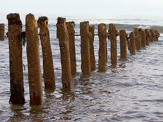 Sea Defence by Trevor Kersley