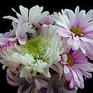 Romantic Bouquet by Annie Adkins