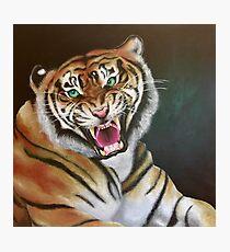 Bengal Roar Photographic Print
