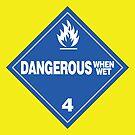 Dangerous when wet by Rupert Russell