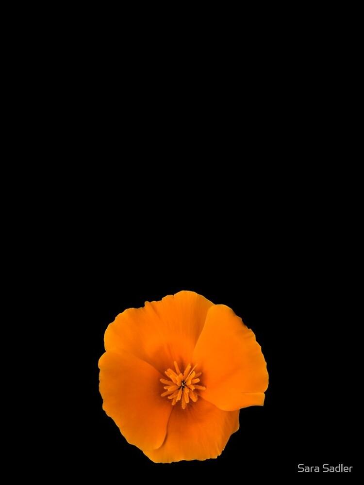 Golden Poppy Flower by sadler2121
