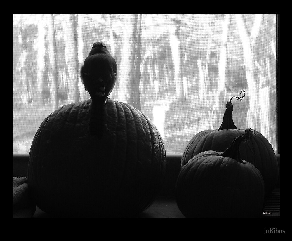 Looking out from my pumpkin by InKibus