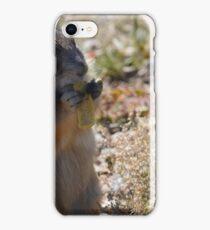 Prairie Dog 3 iPhone Case/Skin