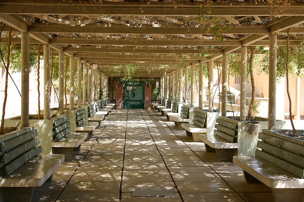 St Syrian Monastery Wadi Natrun Egypt by desertman