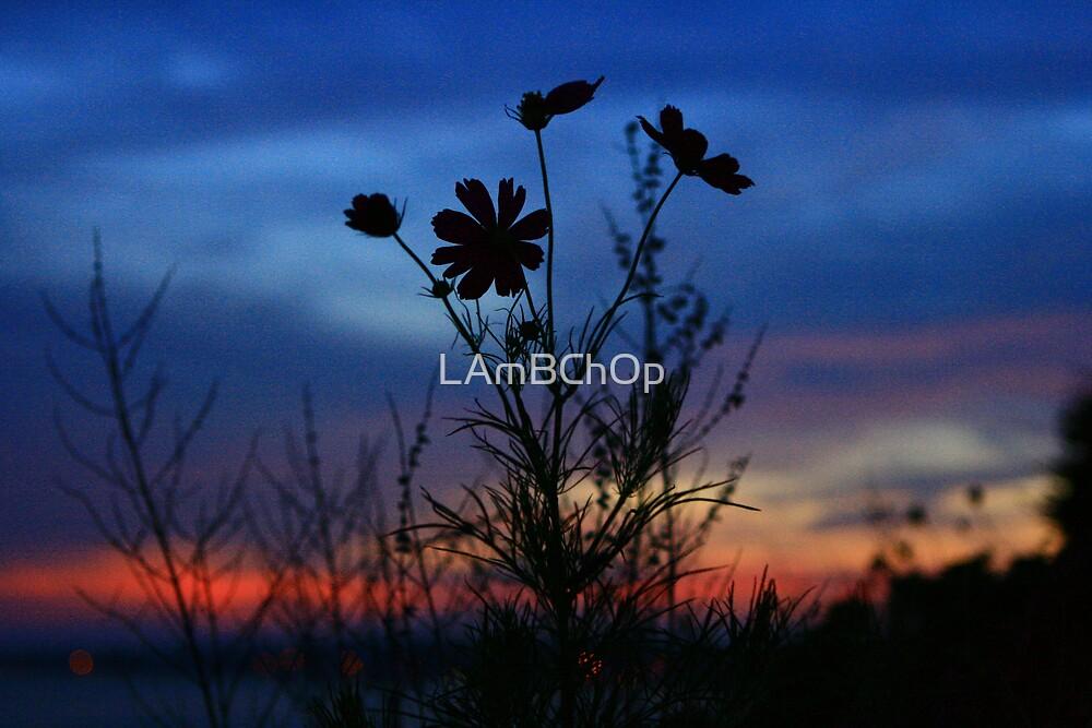 Sunset Bouquet by LAmBChOp