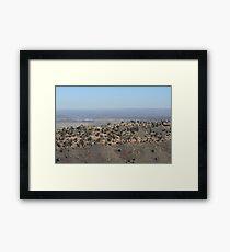 Dinosaur Ridge Colorado Framed Print