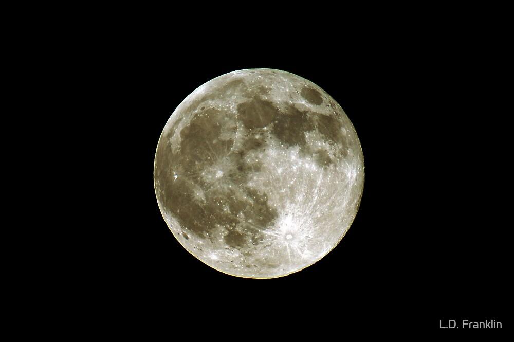 Luna by L.D. Franklin
