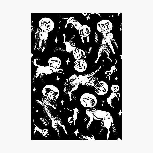 Space dogs (black background) Photographic Print