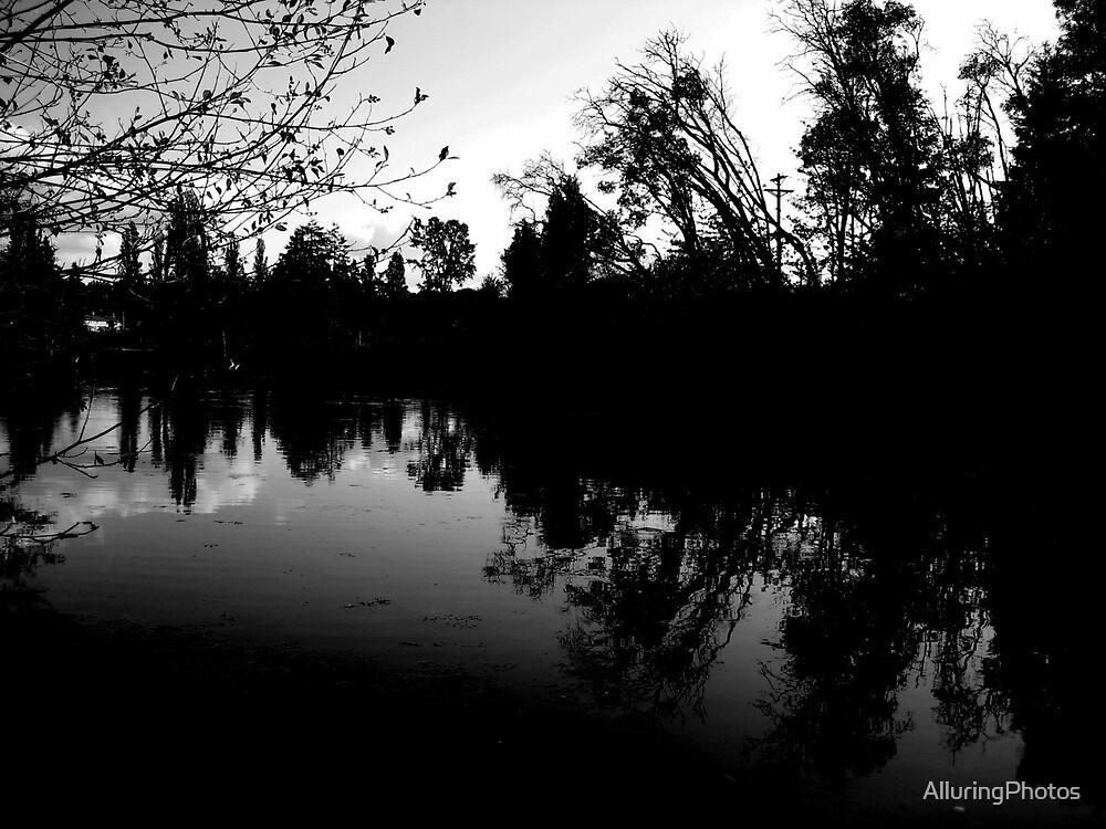 Stilled B&W by AlluringPhotos