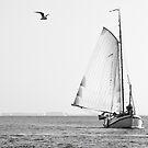 Vintage Sailing on the Eastern Scheldt, The Netherlands. by VanOostrum