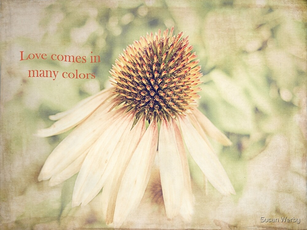 Love comes in many colors by Susan Werby