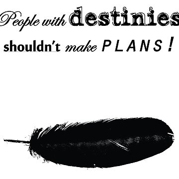 People with destinies shouldn't make plans by karuja