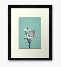 Flower On Blue Design Framed Print