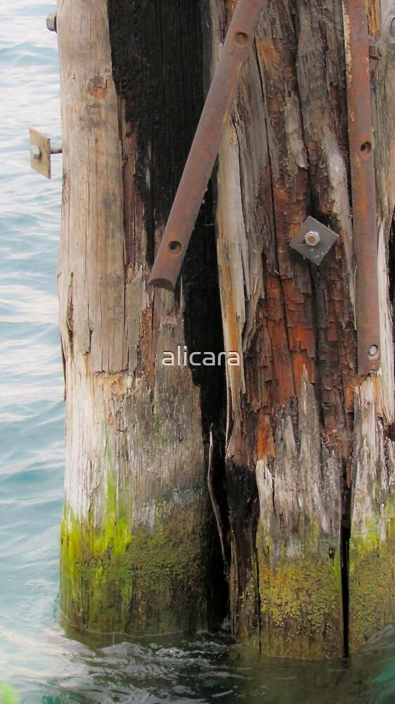 Bricola by alicara