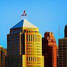 Detroit Skyline 2   by Barry W  King
