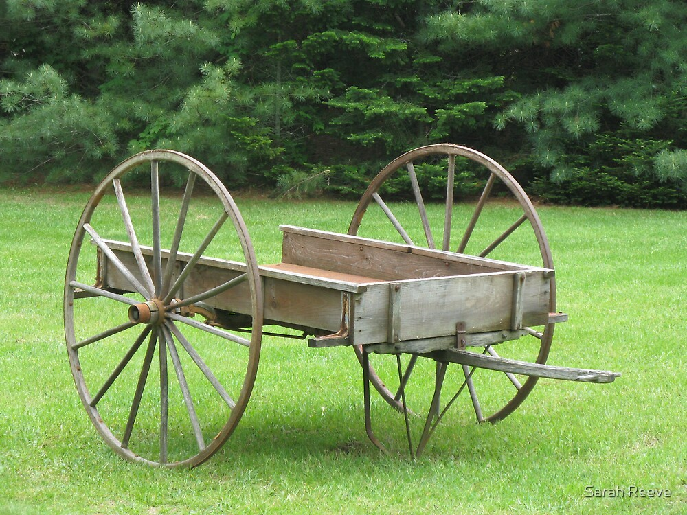 Wagon by Sarah Reeve