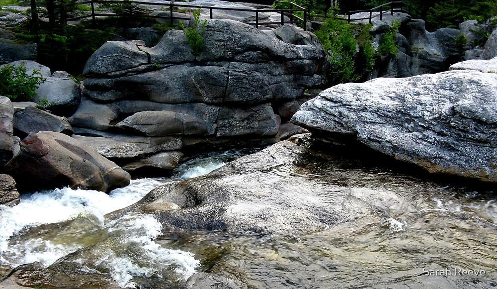 Waterfall by Sarah Reeve