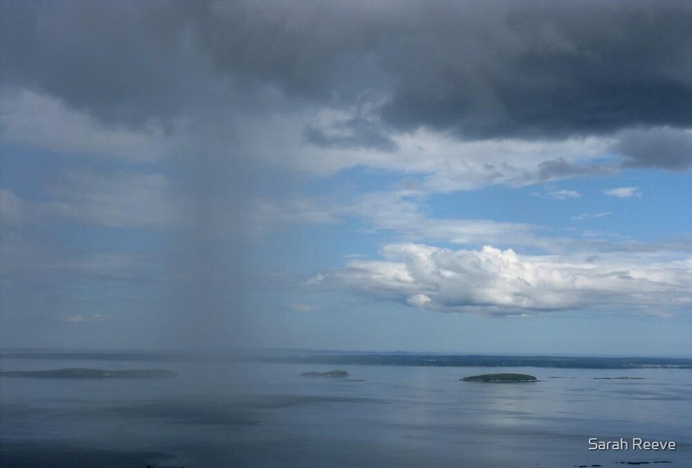 Sole Rain by Sarah Reeve