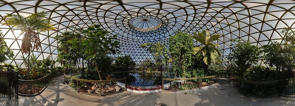 Mt. Coot Tha tropical dome, Brisbane by David James