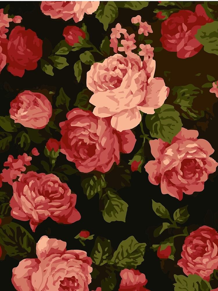 Roses by blackychaan