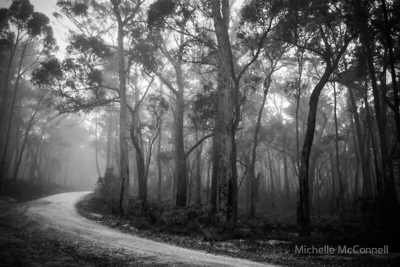 Black And White Misty : Quot misty trees in black and white art prints by michelle