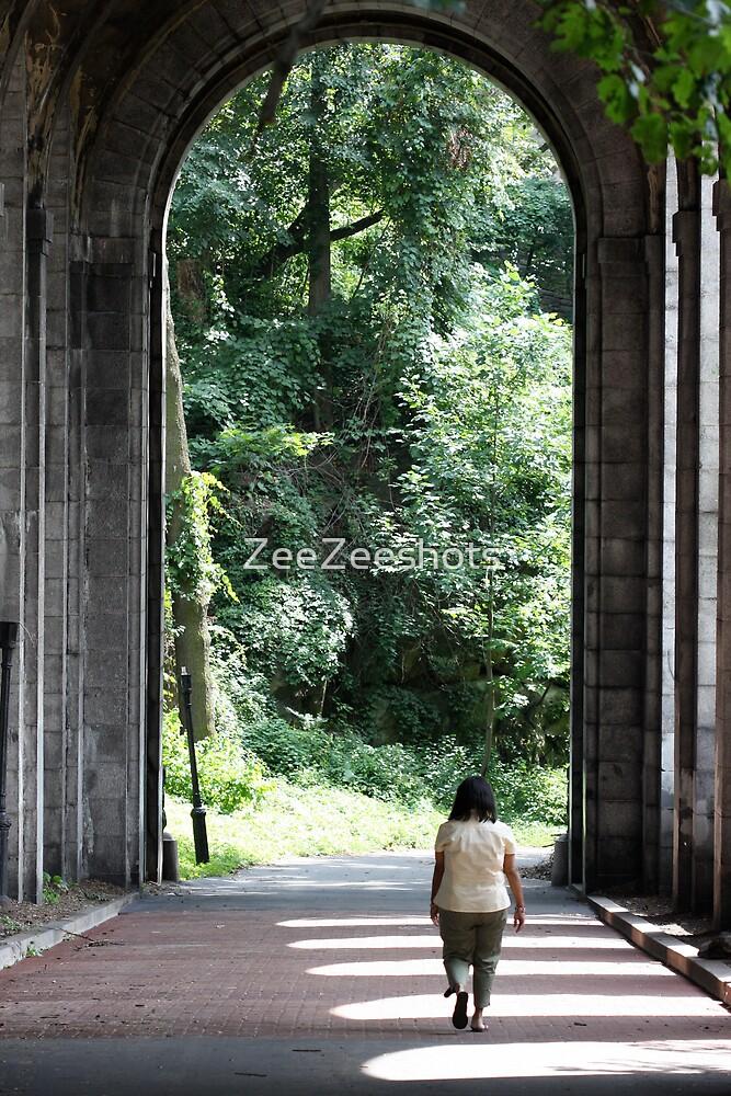Walk of Solace by ZeeZeeshots