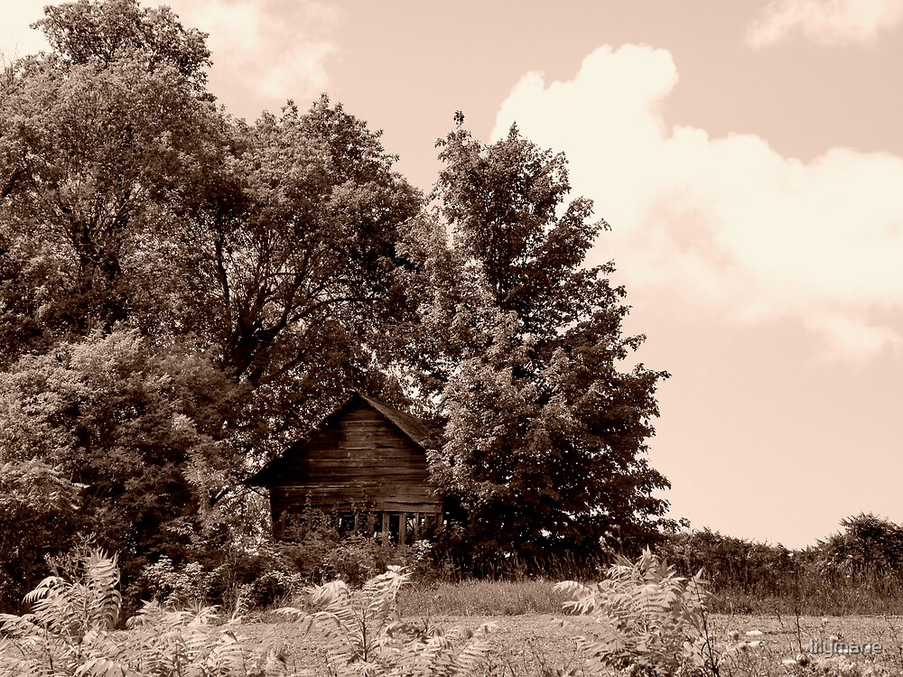 the old barn by lilymarie