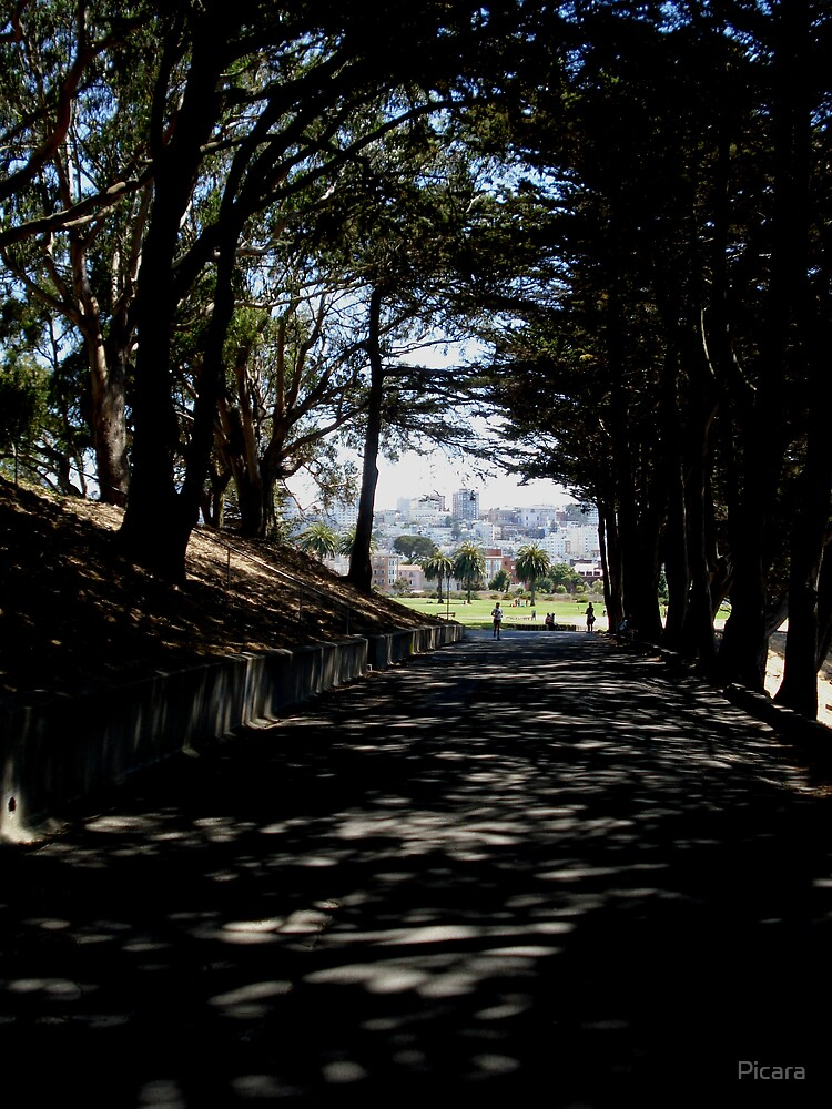 Trail by Picara