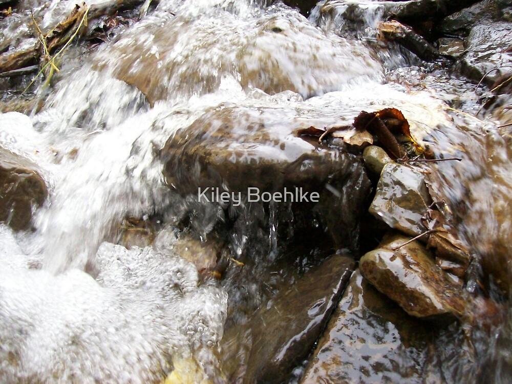 Wet Stone by Kiley Boehlke